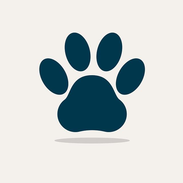 Consultas y revisiones mascotas